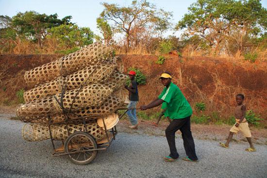 CAMEROUN – Province de l'Adamaoua, près de N'Gaoundal