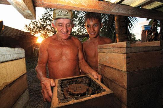 BRÉSIL – État du Pará – Belem